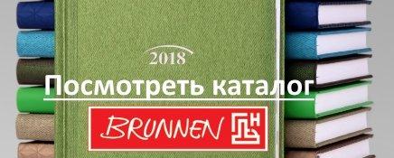 Brunnen_2019
