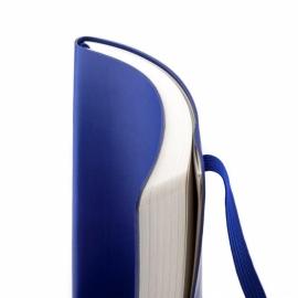 ЕЖЕНЕДЕЛЬНИК 2020 AXENT PARTNER FLEX  125*195 формат,синий